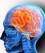 nervrol